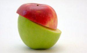 apple-segment.jpg