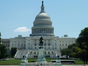 The User Experience of US Government Websites_Washington DC