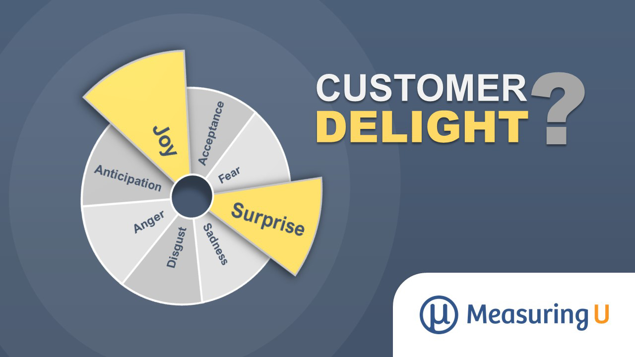 What Is Customer Delight?