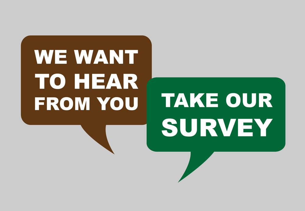 What Motivates People to Take Free Surveys?